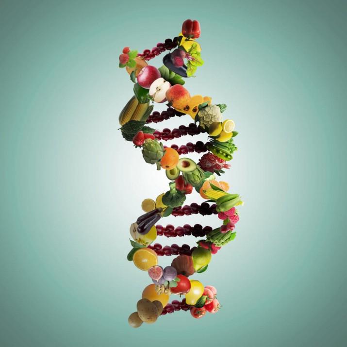 Post epigenética de la obesidad